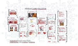 Copy of FENDAS LÁBIO-PALATAIS