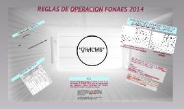 Copy of REGLAS DE OPERACION FONAES 2014