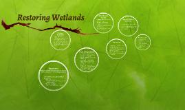 Restoring Wetlands