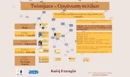 Twinspace - Οργάνωση