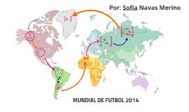MUNDIAL DE FUTBOL 2014