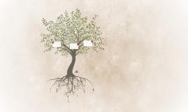 Desde la raíz a los resultados 2 (plantilla)