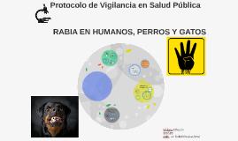 Protocolo de Vigilancia
