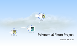 Polynomial Photo Project