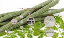Copy of Proyecto de creacion de aceite de moringa