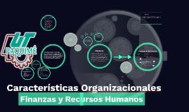 Características Organizacionales