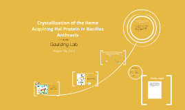 crystallization of the heme acquiring hal protein in bacillus anthracis