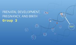PRENATAL DEVELOPMENT, PREGNANCY, AND BIRTH