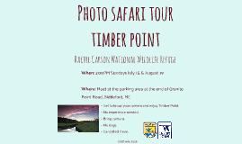 Timber Point Photo Safari