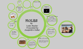 full book report on holes Holes by louis sachar character descriptions, character analysis and descriptions.