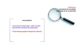 Copy of AUDITORIA EN LAS AREAS FUNCIONALES DE LA EMPRESA