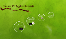 Snakes VS Legless Lizards
