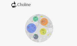 Copy of Choline