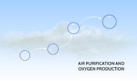 AIR PURIFICATION AND OXYGEN PRODUCTION