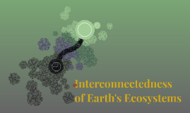 Interconnectedness of Earth's Ecosystems
