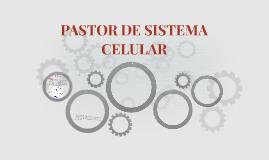 PASTOR DE SISTEMA CELULAR