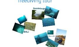 FREEDIVER, a free underwater experience