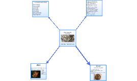 Ókori fémek és szerepük