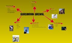 Gursimran's Collage