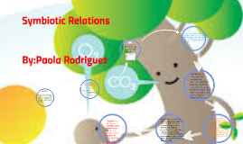 Symbiotic Relations