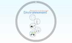 Environnement-perspective historique