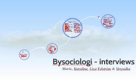 Bysociologi - interviews