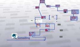 PIM - Consulting