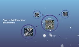 Analyse lokalrområde: Teglholmen-Sluseholmen