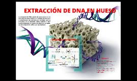 Extraccion de ADN en hueso
