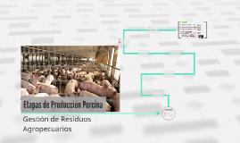 Etapas de Producción Porcina