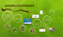 SABANA COLOMBIANA