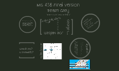 MIS 438 Final Version - Grey