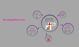 Copy of The Animal Red Cross