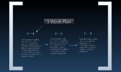 3 Week Plan