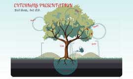 External Presentation 1st GA