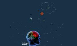 Brain Development and Plasticity