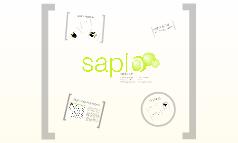 Saplo@Infobyte