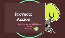 Proyecto Acción