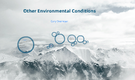 Other Environmental Conditions