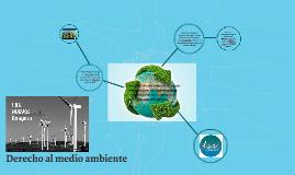 Copy of Derecho al medio ambiente