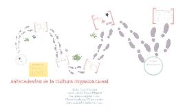 Antecedentes de la cultura organizacional