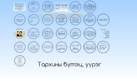 Copy of Тархины бүтэц, үүрэг