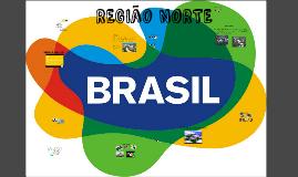 BRASIL  REGION NORTE