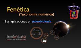 Taxonomia numérica