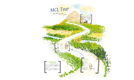 MCL Tear