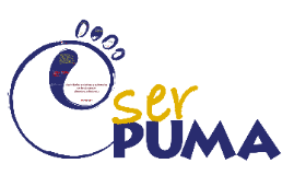 Copy of Ejemplo Ser-puma para TIC en la educación