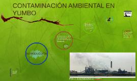 Copy of CONTAMINACIÓN AMBIENTAL EN YUMBO