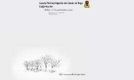 Árbol filogenético Animalia