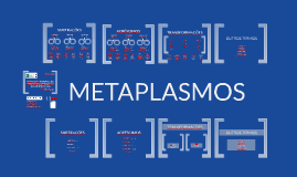 3JEL2017_METAPLASMOS v1'4