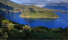 Cotacahi-Cayapas ecological reserve
